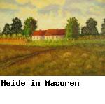 Heide in Masuren
